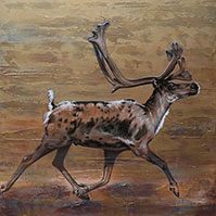 Caribou mixed media painting